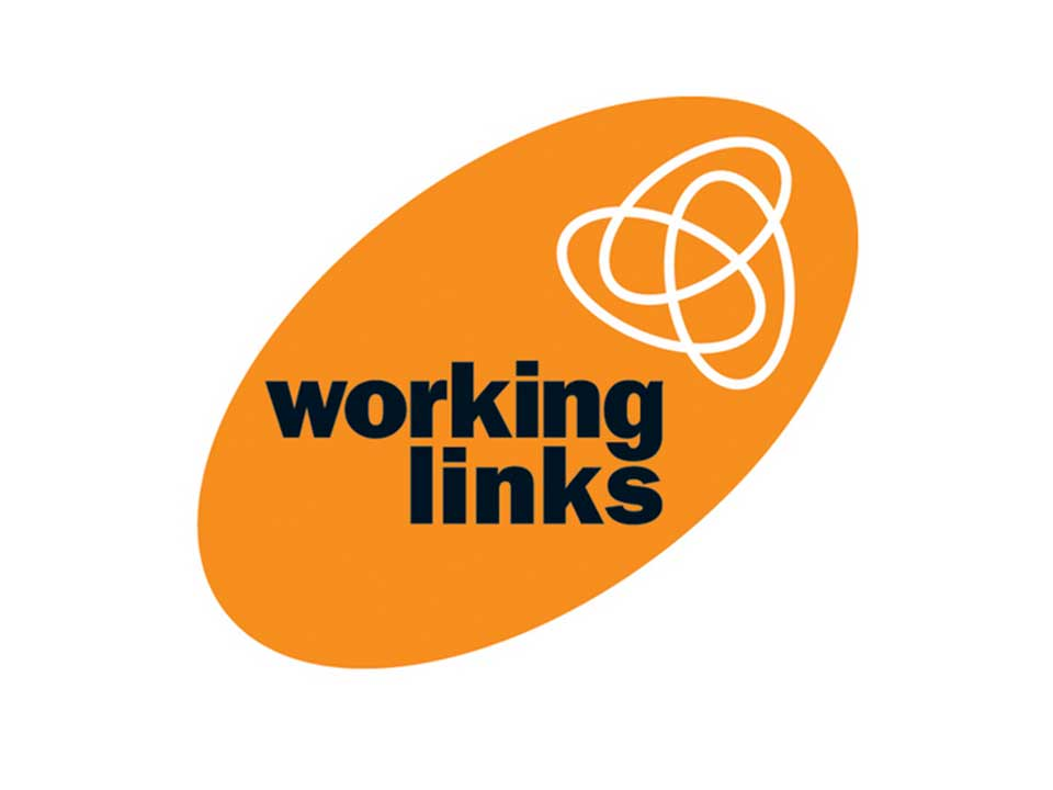 Flint Spark Consulting was commissioned to develop and deliver a change management workshop to develop the skills of the delegates to effectively lead their teams through a major change at the Working Links.