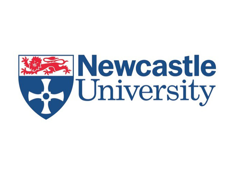 Flint Spark Consulting have supported staff development and change management at Newcastle University through our innovative training workshops and through our facilitation services